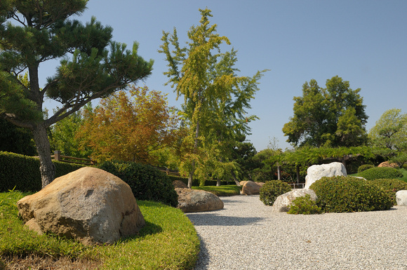 Dry Garden with Directional Stone